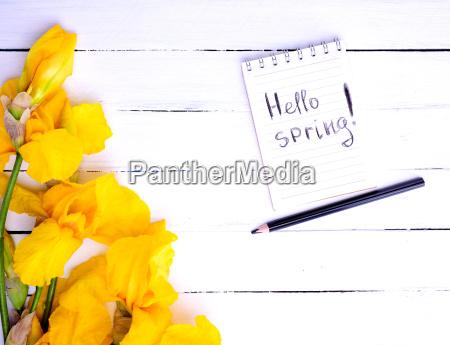 caderno com a inscricao ola primavera