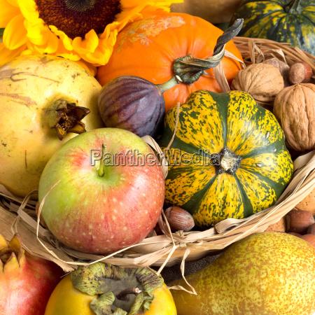 fechar laranja alimento ferias verde marrom