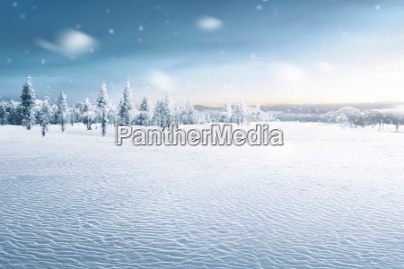 paisagem de campo nevado com arvores
