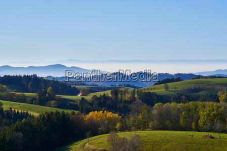 montanhas olhar vista floresta negra alemanha