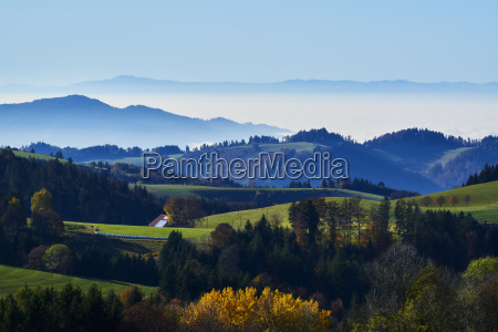 turismo olhar vista floresta negra natureza
