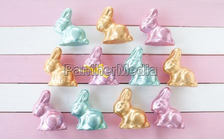muitos coelhinhos da pascoa coloridos