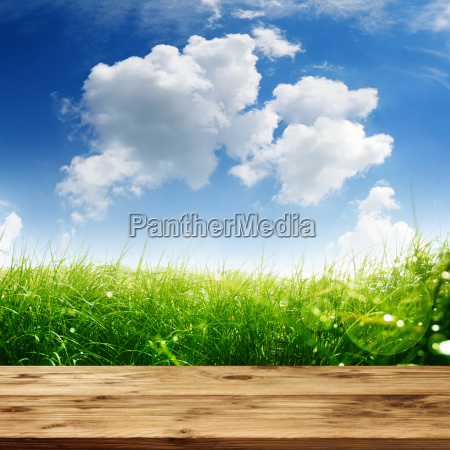 spring meadow with wooden table and