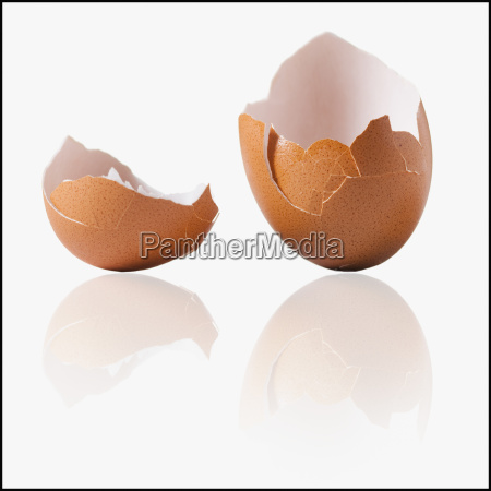 alimento nascimento marrom concha quebrado ovo