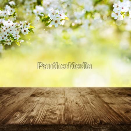 tabela de madeira com flores da