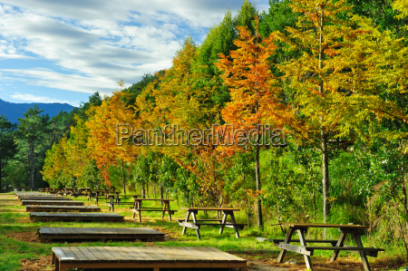 furniture bucolic sights autumnal sightseeing asiatic