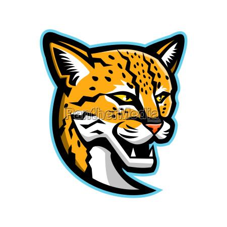 margay head mascot