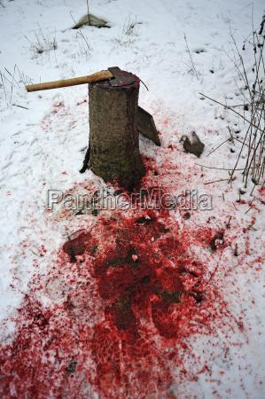 morte europa bavaria crime assassinato deserto