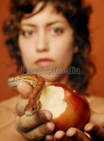 vespera comendo a maca