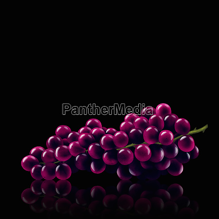 grupo de uvas vermelhas