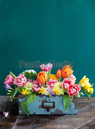 flores coloridas da mola
