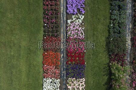 aerial view experimental flower crops hohenheim