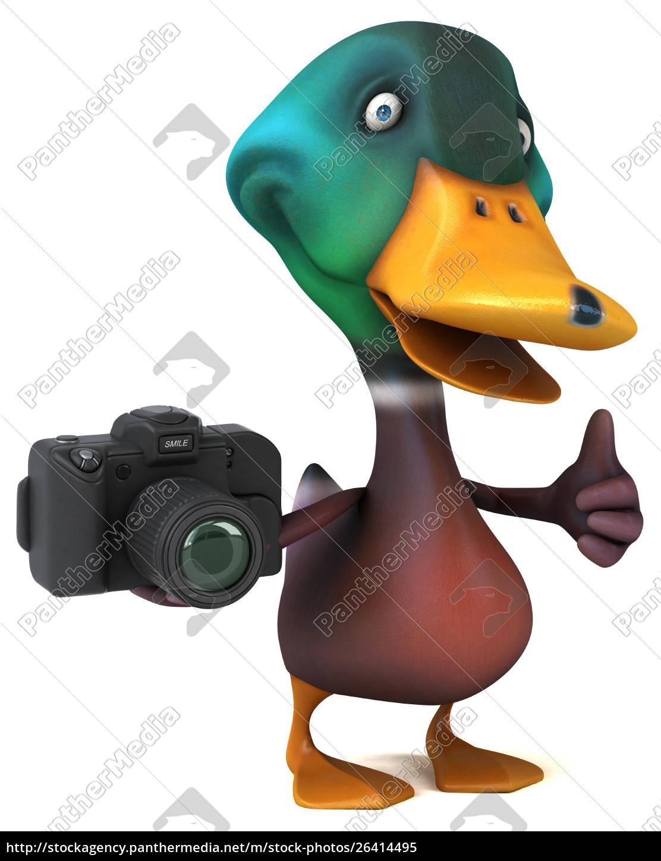 pato, do, divertimento-ilustração, 3d - 26414495