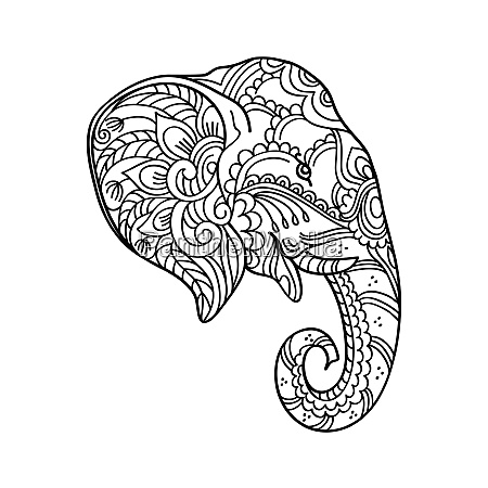 drawing zentangle elephant head for coloring