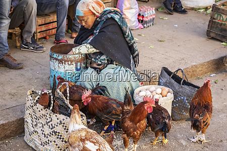 mulher eritreana vendendo galinhas no mercato