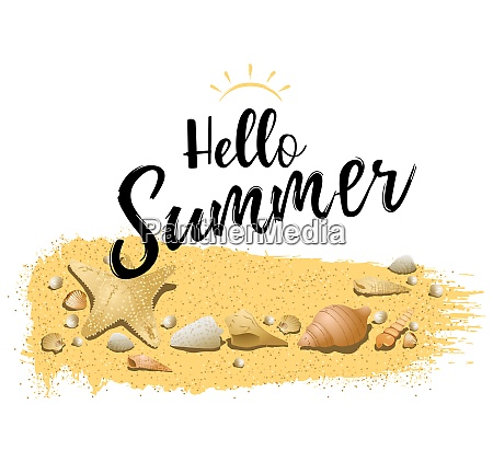 hello summer design com conchas de