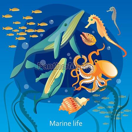 fundo de vida subaquatica do oceano