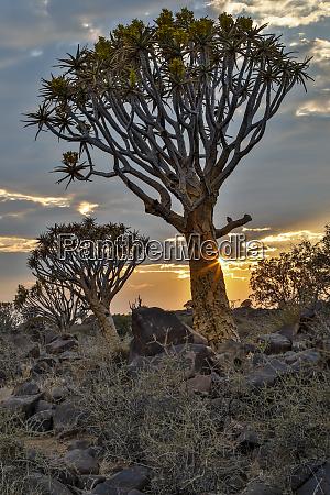 africa namibia keetmanshoop sunset in the