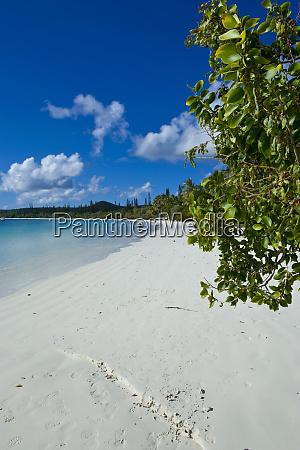 praia de areia branca bay de
