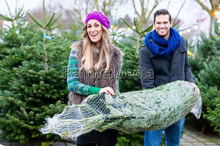 casal carregando comprou arvore de natal