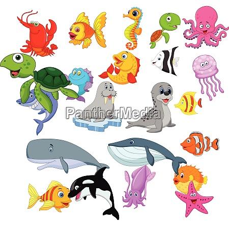 conjunto de colecao de vida marinha