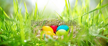 ovos de pascoa em um prado