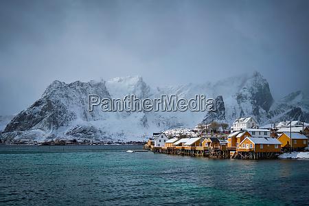 yellow rorbu houses lofoten islands norway