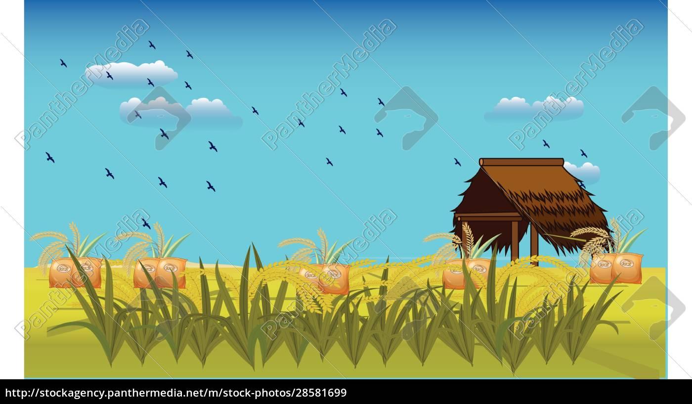 uma, casa, em, uma, fazenda, de - 28581699