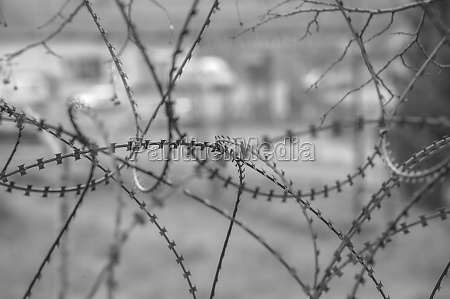 barbed, wire, fence, at, the, border - 29781362