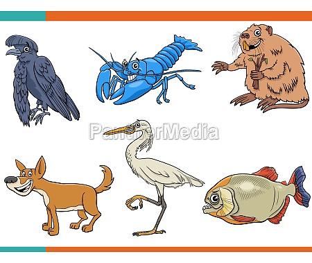 desenho, animado, engraçado, animais, selvagens, personagens - 29845024
