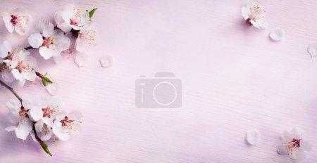 ID de imagem B137623752