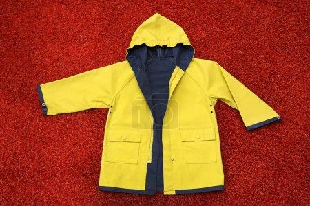amarelo, vestuário, protecção, vestido, capuz, Casaco - B359062932