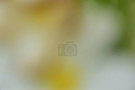 ID de imagem B302948364