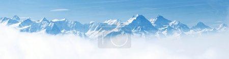 ID de imagem B11145689