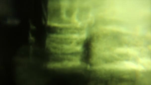 Video B99933778